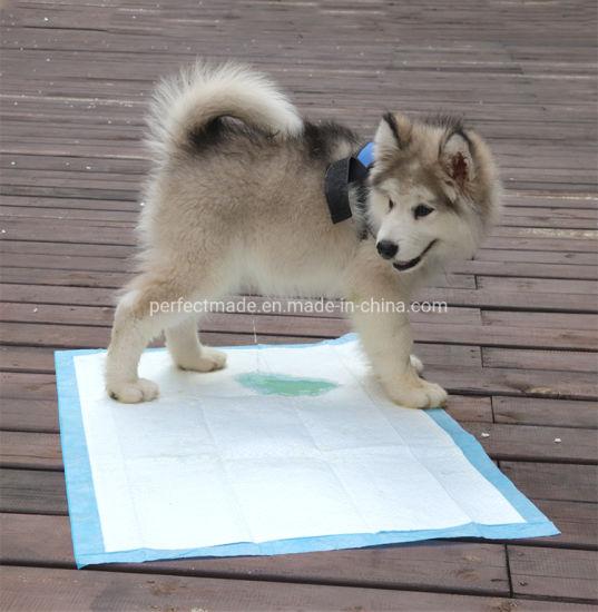 Waterproof Disposable Outdoor Dog Cat Pet Diaper