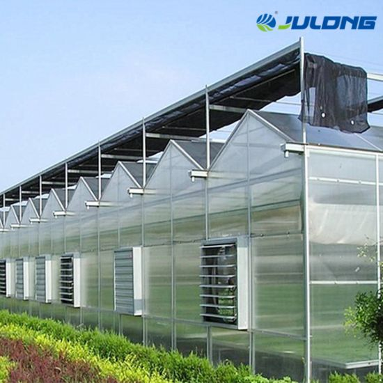 Multi Span Green House Roofs with Transparent Plastic Polycarbonate Sheet