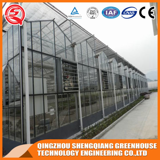 Multi-Span Galvanized Steel Frame Glass Garden Grow Tent/Greenhouse for Sale
