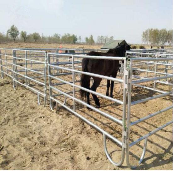USA Galvanized Steel 10FT Horse Panel/Corral Panels/Cattle Panels/Horse  Corral Panels