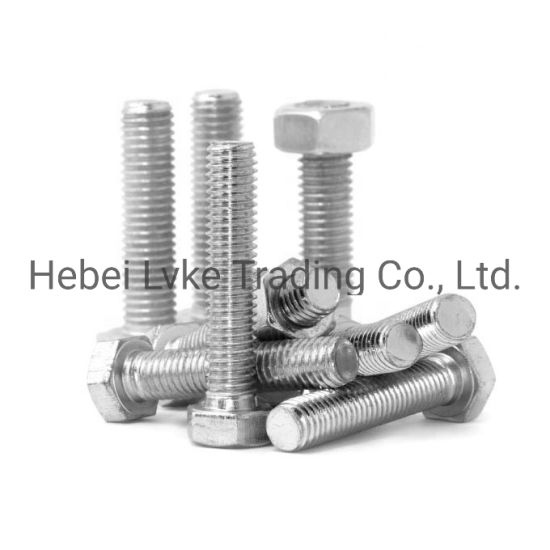 China Nice Price 304l 316l Ss Hex Bolt And Nut Sizes M12 China Fastener Bolts And Nuts