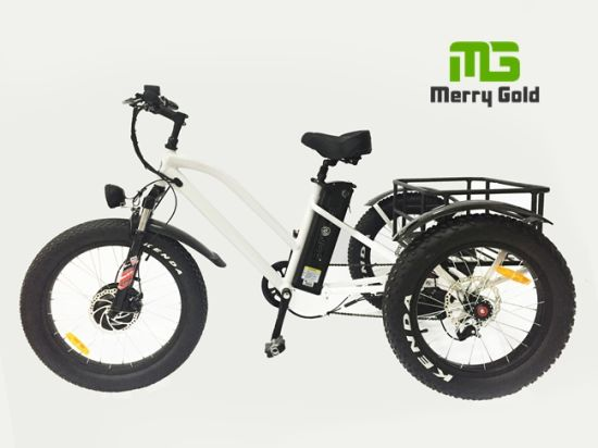 Fat Tire Hot Sale Three Wheel Electric Cargo Tricycle pictures & photos