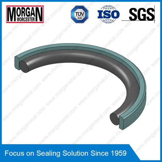 China Omk-Mr/OE Series NBR/FKM+PTFE Hydraulic Piston Seal Ring ...