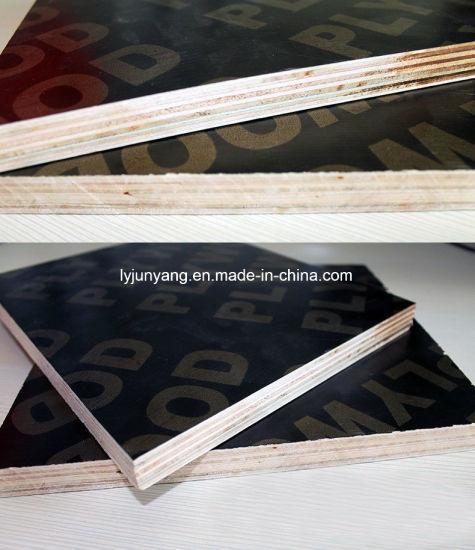 Furniture Plywood E1 Glue B Grade White Nature Bleached Poplar Plywood
