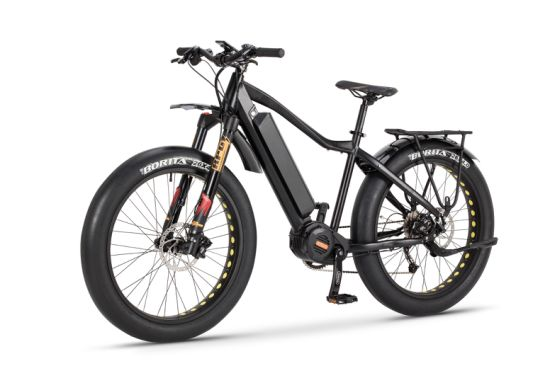 Powerful Fat E Bike with Middle Motor