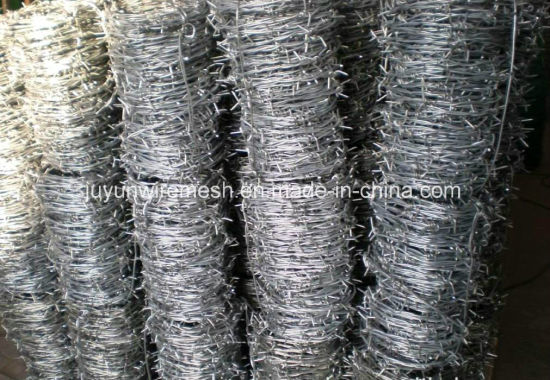 Electro and Hot Dipped Hot Dipped Barbe Wire (specialized manufacturer) pictures & photos