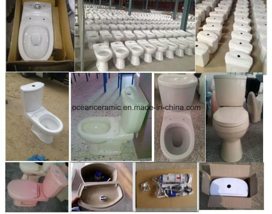 China 839 Washdown S Trap or P Trap Two Piece Toilet with