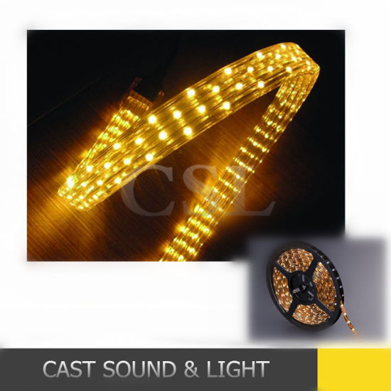 RGB LED Strip Light/ RGB LED Flexible Strip Indoor Outdoor pictures & photos