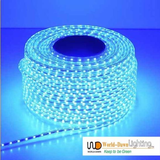 China Blue 110V 220V 4 Wire LED Flat Rope Light - China Rope Light ...