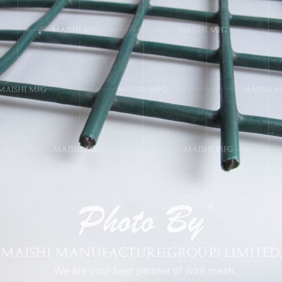 China Welded Wire Mesh Panels - China 1/2\