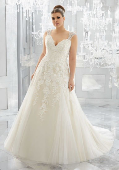 China Lace Bridal Gowns Plus Size Tulle A-Line Wedding Dresses ...