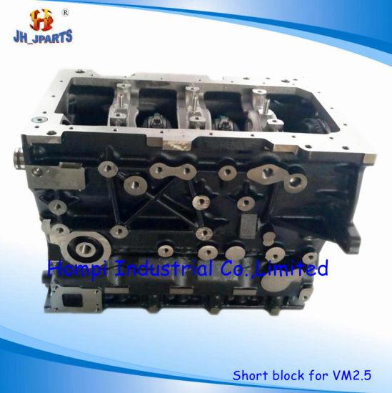 Auto Engine Short Block/Long Block for Vm 2.5 Vm 2.8