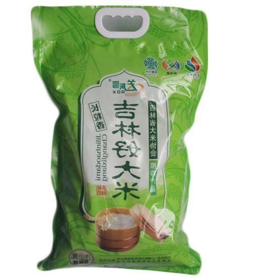 Custom Logo Printing Resealable Food Vacuum Plastic Bag