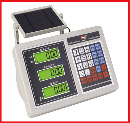 Energy Saving Plarform Digital Weighing Scale pictures & photos