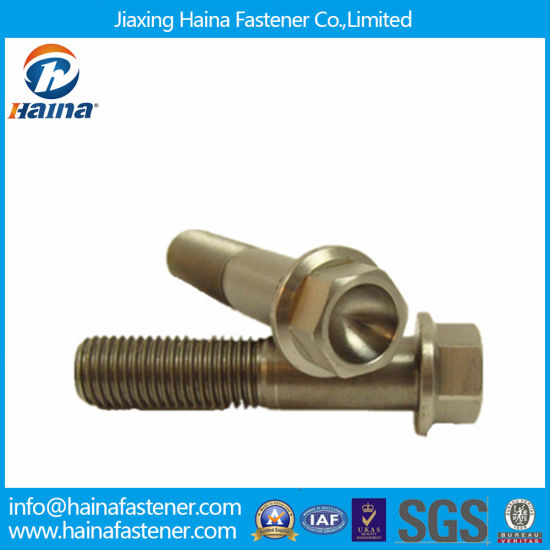 China DIN6921 Titanium Hexagon Flange Bolts for Medical - China