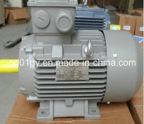 Siemens High Efficiency LV Electric Motor pictures & photos