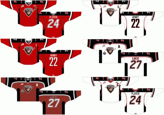 China Western Hockey League Vancouver Giants Customized Ice Hockey
