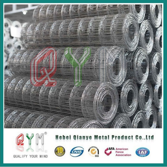 Galvanized PVC Coated Welded Wire Mesh/ Iron Wire Mesh