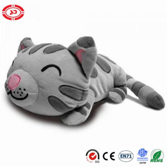 China Big Bang Theory Soft Kitty Mini Cat Plush Toy China Soft Toy