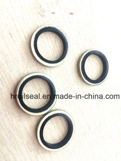 China EPDM Bonded Washer Rubber Bonded Metal Seal Washer Bsp1/8\