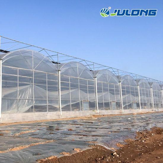 Low Cost Hydroponics Farm Greenhouse Polytunnel Multi Span Plastic Film Greenhouse Used Greenhouses