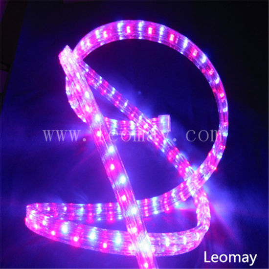 Wedding Decoration 2 Wire Changing Round LED Rope Light pictures & photos