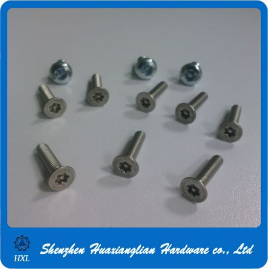 Ss304 Pin-in-Torx Anti-Theft Machine Screw pictures & photos