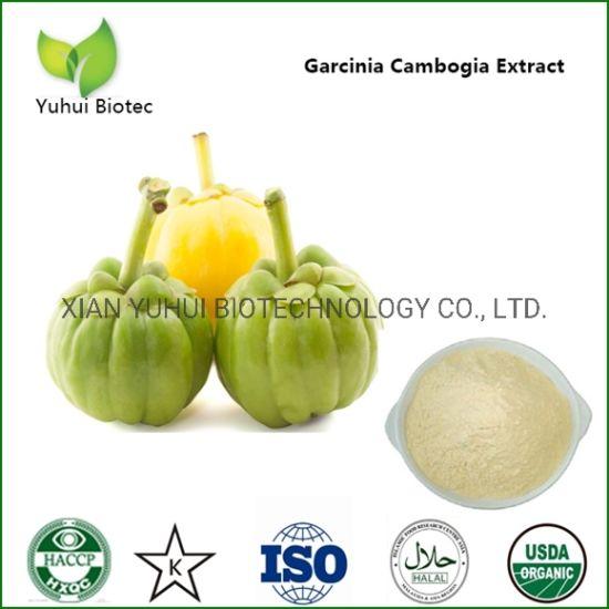 Chinesischer Name Garcinia Cambogia