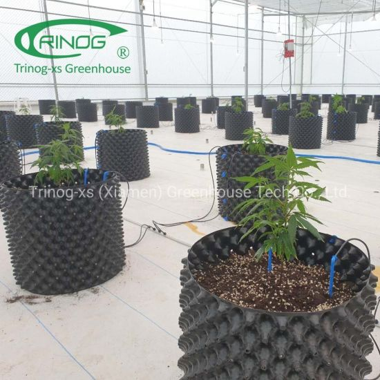 Auto blackout system light deprivation greenhouse with hemp planting