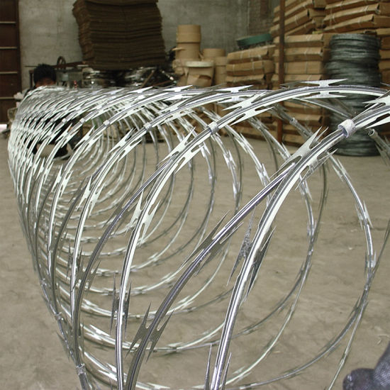 Competitive Concertina Razor Wire (BTO-10) pictures & photos