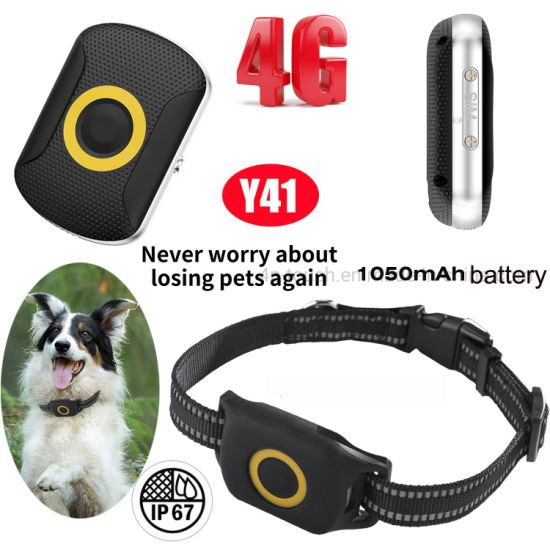 Latest IP67 Waterproof LTE 4G Pets Systems GPS Tracker with Real Time Monitoring and Long Battery Life Y41