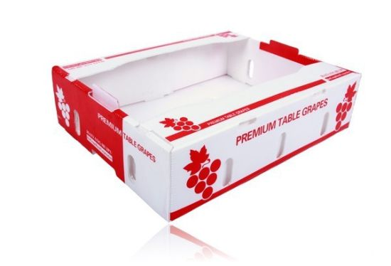 PP Plastic Hollow Corrugated Sheet Packaging Fruit Box
