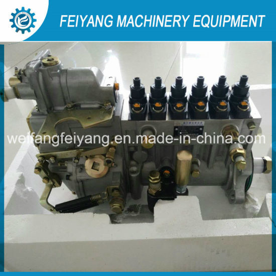 Longbeng Fuel Injection Pump 612600061235