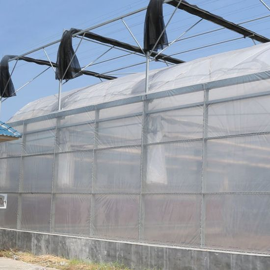 Vegetable Tunnel Greenhouse with 15 Sils Film From Factory