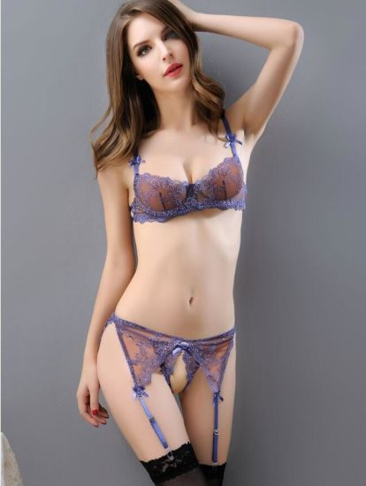 dcbcd5cb5987c China Hot Sale Sexy Women Lingerie Lace Underwear Set - China ...
