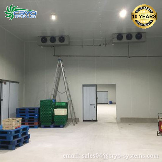 Walk In Freezer For Sale >> China Outdoor Poultry Commercial Walk In Freezer For Sale China