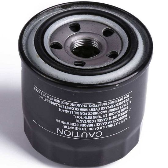 Low Price Sale Oil Filter Accessories for Great Wall (1017100-ED01-1)