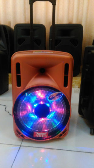 Feiyang Temeisheng 12inch Rechargeable Battery Speakers with Professional Amplifier Price $35 F12-1 pictures & photos