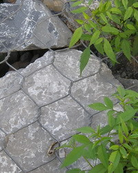 Gabion Mesh (R-SLW) pictures & photos