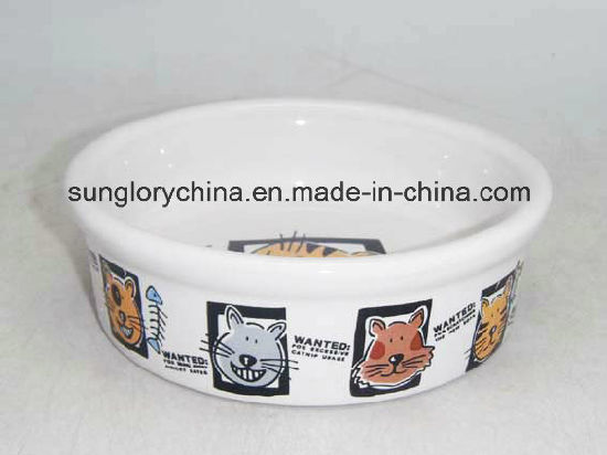 Ceramic Pet Bowl of Gyp039