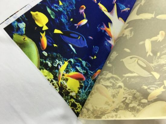 "Apparel Digital Printing with 44"" 105GSM Fast Dry Anti-Curled Sublimation Paper Supplier for Polyester Textile Printing pictures & photos"