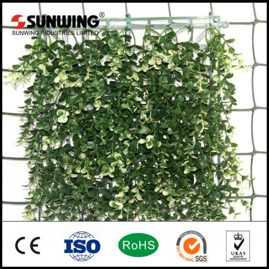 Cheap Artificial IVY Boxwood Grass Fence Garden Decoration pictures & photos