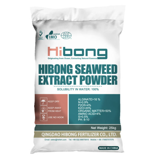 High Potium Fertilizer Brands Dried Seaweed Extract Powder