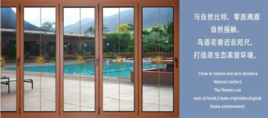 China Gold Supplier Frameless Folding Glass Door Lowes Glass