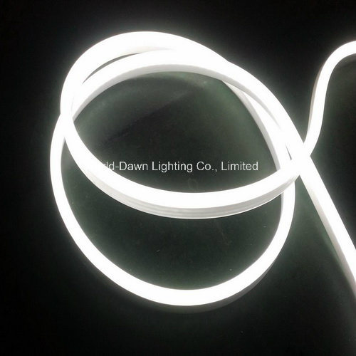 New Item-LED Neon Flex-High Brightness (WD220-F2W-2835-120L-NFL) pictures & photos
