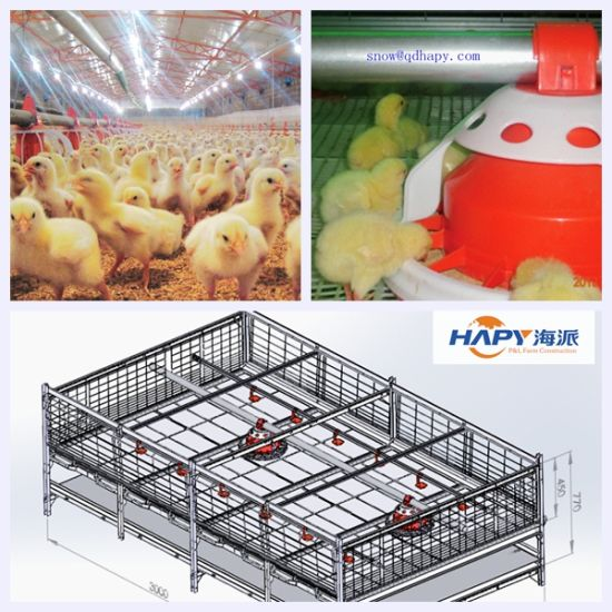 Automatic Equipment in Poultry House with Prefab House Construction pictures & photos