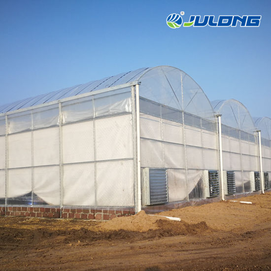 Large High-Tech Commercial Muti-Span Plastic High Tunnel Greenhouse