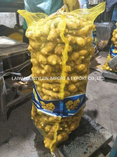 Wholesale Organic China Fresh Ginger Price pictures & photos