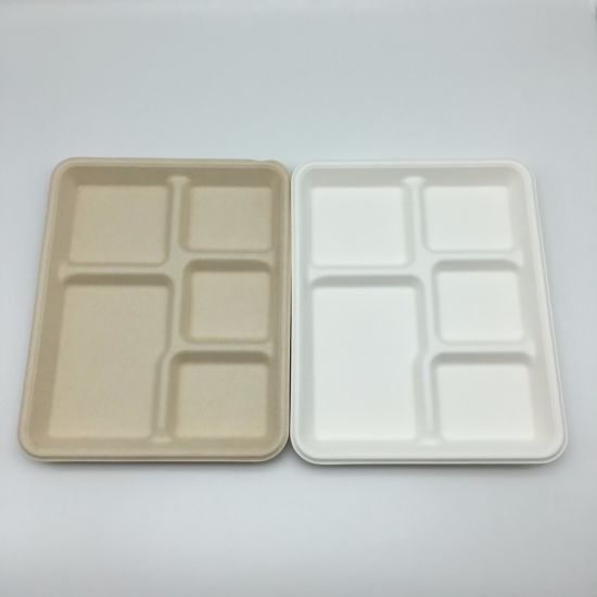 Disposable Tableware Biodegradable Bagasse Food Container 5 Compartments Food Tableware Sugarcane Tableware Plates & China Disposable Tableware Biodegradable Bagasse Food Container 5 ...