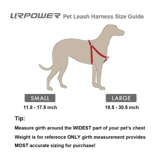 Dog Leash Harness Adjustable & Durable Leash Set & Heavy Duty Denim Dog Leash Collar for Small and Large Dog, Perfect for Daily Training Walking Running (Small) pictures & photos